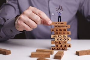 Real Estate Asset Management vs Property Management