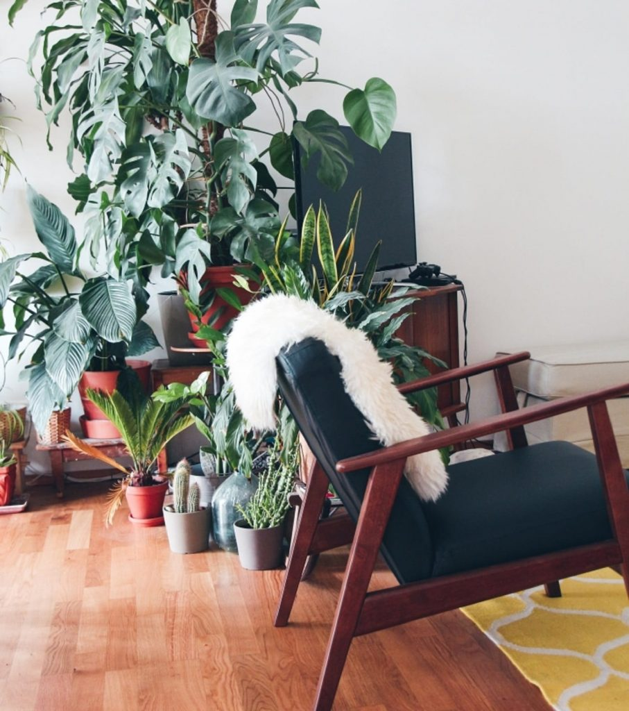 Maximize Your Airbnb Rental Income through Renovation and Decoration - Make Use of Accents