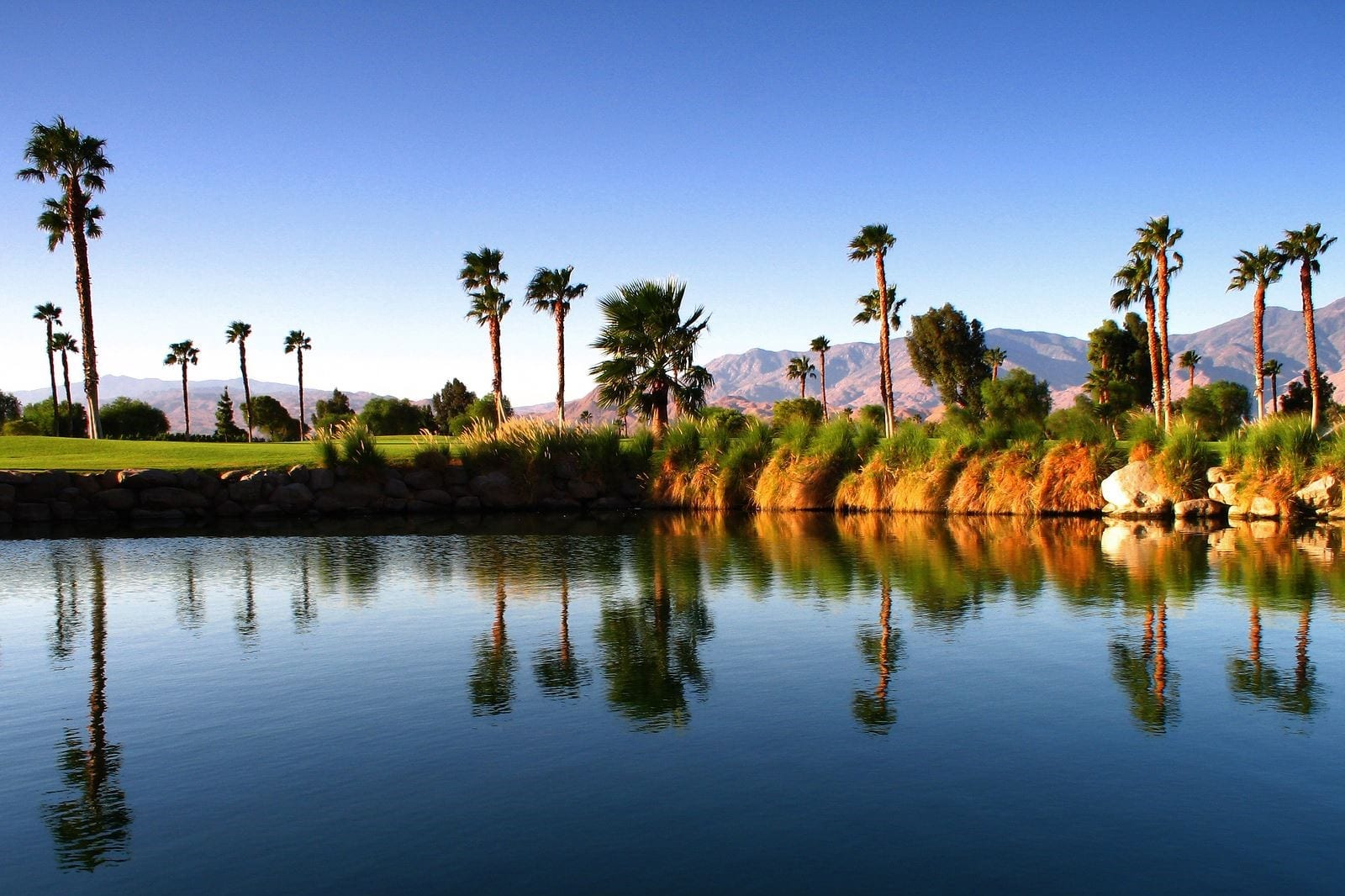 Airbnb Palm Springs A Good Investment In 2019 Mashvisor