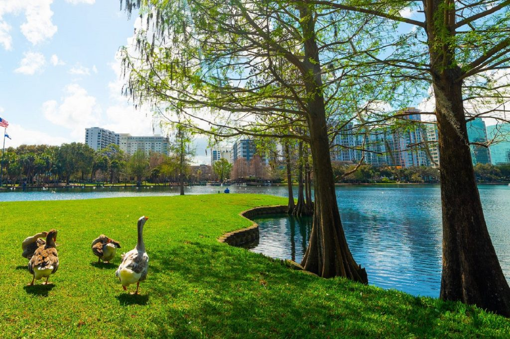 Orlando Real Estate Market Report 2019 Best Orlando Neighborhoods for Traditional Long Term Rentals