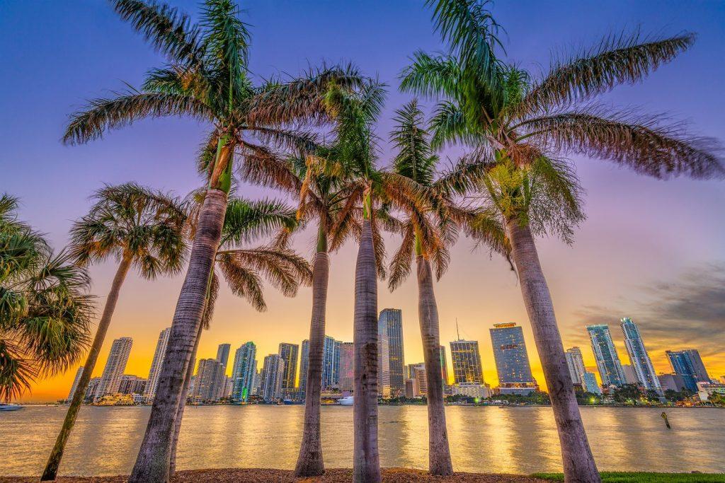 Miami Real Estate Market Report 2019 Traditional Rentals Best Neighborhoods